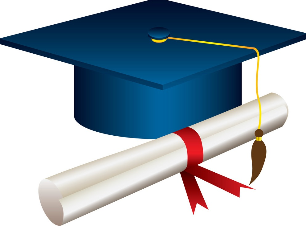 color graduation hat with diploma vector 13464604